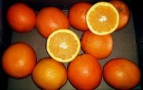 oranges5