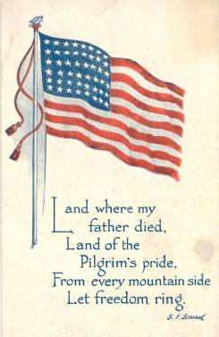 FreedomFlagPostcard